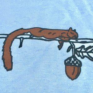 Squirrel & Acorn