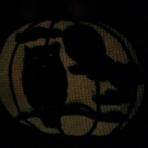 Jack O' Lantern - Owl